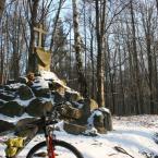 Pomnik Rogera w okolicy Rachowic